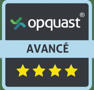 Badge de niveau avancé Opquast